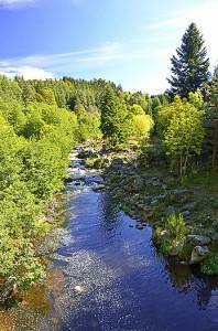 Les gorges du Lignon au Chambon-sur-Lignon