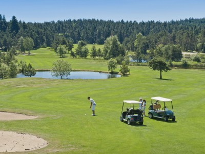 [cml_media_alt id='2334']golf-chambonsurlignon-5[/cml_media_alt]